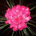 Цветы по поводу и без